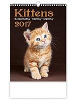 Kočičky 2017