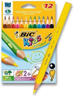 Obrázek produktu Pastelky Bic Kids Evolution Triangle - 12 barev
