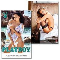 Nástěnný obrázkový kalendář Playboy