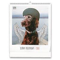 Charitativní nástěnný obrázkový kalendář Eliška Podzimková 2020