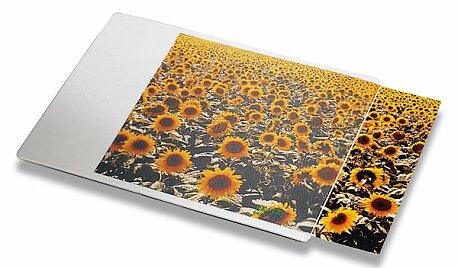 Obrázek produktu Podložka pod myš Esselte Individual - 24 x 19 cm, s kaspou na fotografii