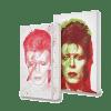 Logo Moleskine David Bowie