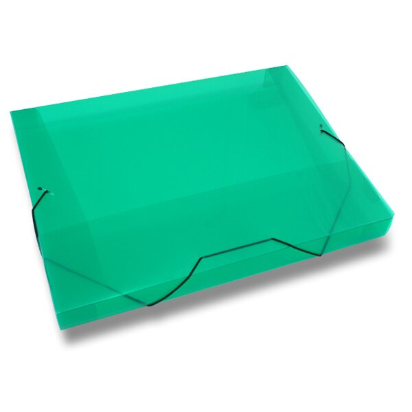 Box na dokumenty Transparent zelené