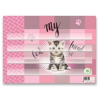 Obrázek produktu Podložka na sestavování slov Kočka