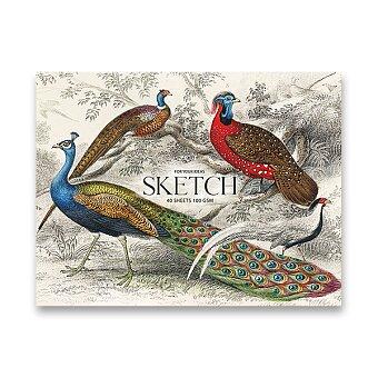 Obrázek produktu Skicák Shkolyaryk Muse Sketch - A4+, 40 listů