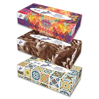 Obrázek produktu Papírové kapesníky Linteo - 2vrstvé, 100 ks v boxu