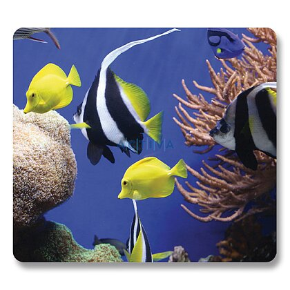 Product image Fellowes Earth Series - mouse pad