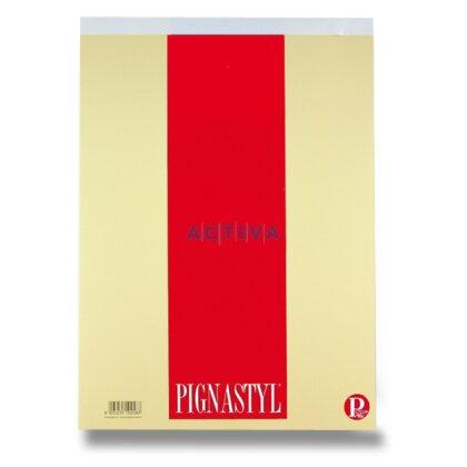 Obrázok produktu Pigna - šitý blok - A4, 70 l., štvorčekový