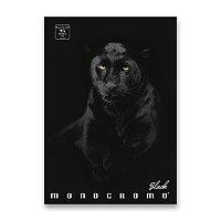 Školní sešit Pigna Monocromo Black