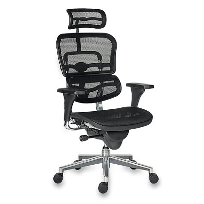 Product image Antares Ergohuman - office chair