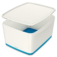 Úložný box s víkem Leitz MyBox
