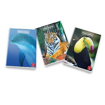 Obrázek produktu Školní sešit Pigna Animal - A4, linkovaný, 40 listů, mix motivů