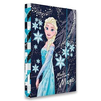 Box na sešity Frozen