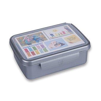Obrázek produktu Svačinový box Zdravá sváča - šedý (barva nerezu)
