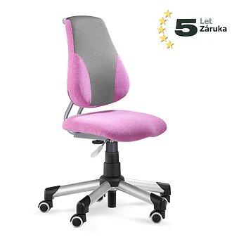 Obrázek produktu Rostoucí dětská židle Mayer Actikid A2 - růžová/šedivá